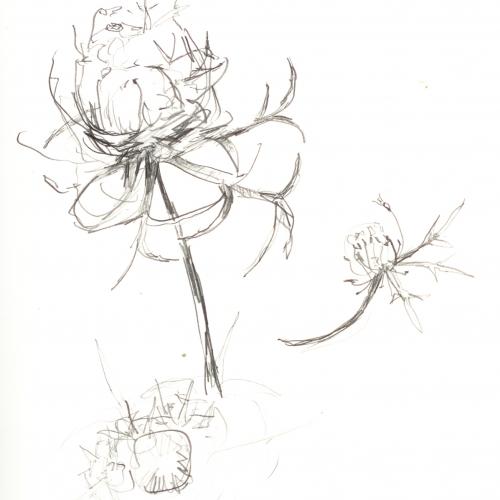 Zeichnungen_6